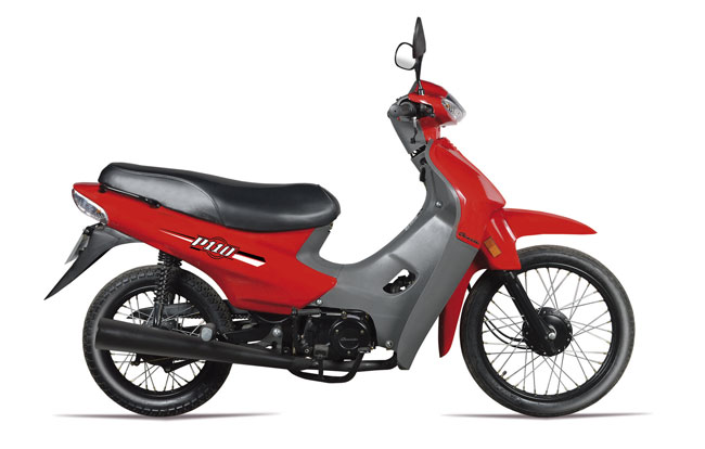 BACCIO-P110